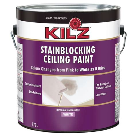 Kilz Bathroom Ceiling Paint by Stain Blocking Ceiling Paint Rona