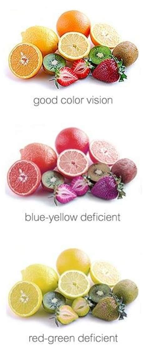 what color blind looks like 28 images 28 what does color blindness look like google