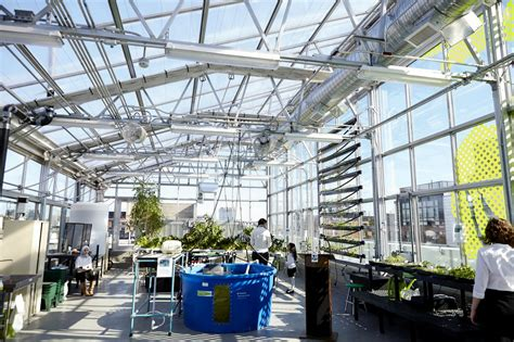 york greenhouse lab lab design williamsburg s ps 84 opens high tech hydroponic rooftop