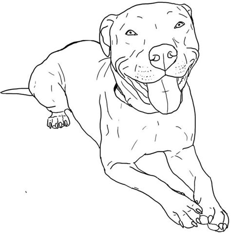 coloring pages pitbull puppies pitbull coloring page pitbull coloring page coloring sky