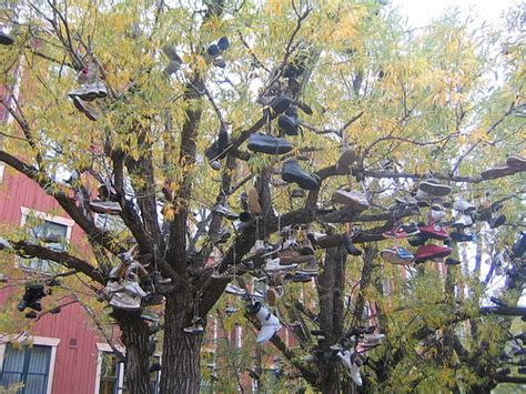 R A Shoes Tinggi ez l r pelik pokok kasut