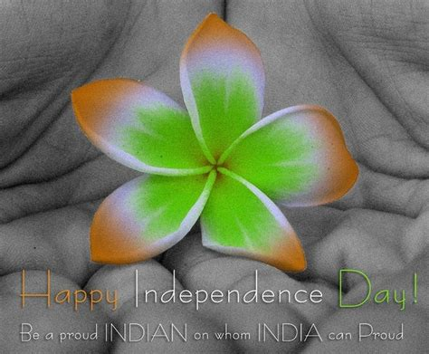 photos for day happy 73rd independence day images indian flag hd