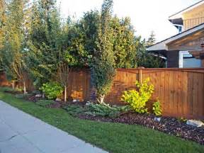 landscaping ideas backyard along fence pdf