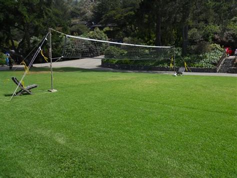 volleyball net for backyard volleyball backyard games landscaping network
