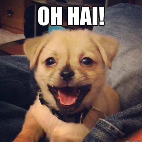 happy puppy meme happy puppy meme www pixshark images galleries with a bite