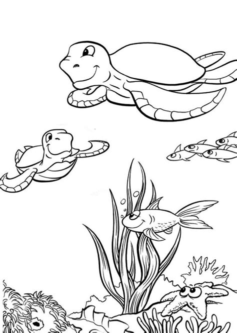 Baby Turtle Coloring Pages by Baby Sea Turtles Coloring Pages Hawksbill Sea Turtle