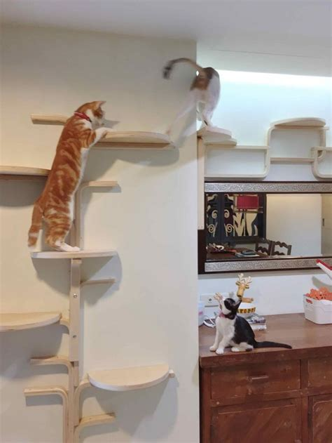 408 best images about cat trees on pinterest cat shelves