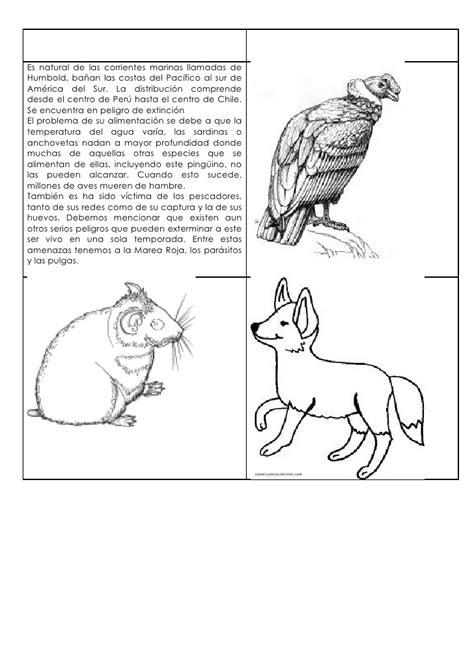 animales peligro extincion peru para colorear unidad 1 los animales y su h 225 bitat 2 176 b 225 sico ficha 1
