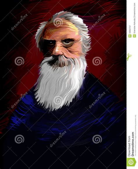 royalty free stock photography image 33802767
