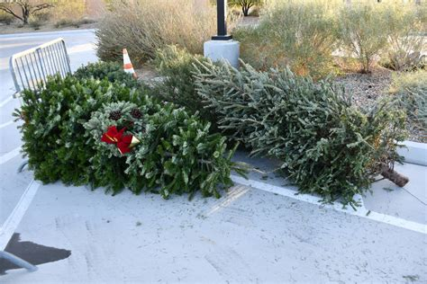henderson shifts to tree recycling season las vegas