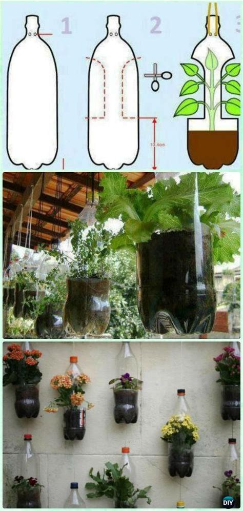 Bottle Gardening Ideas Best 25 Bottle Garden Ideas On Pinterest Plants In Bottles Plants And Diy Herb Garden