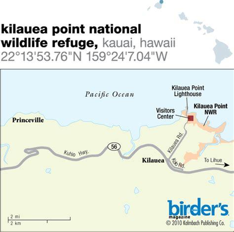 Backyard Bird Count 96 Kilauea Point National Wildlife Refuge Kauai Hawaii