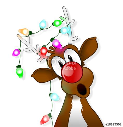 quot rudolph and christmas lights quot stock photo and royalty