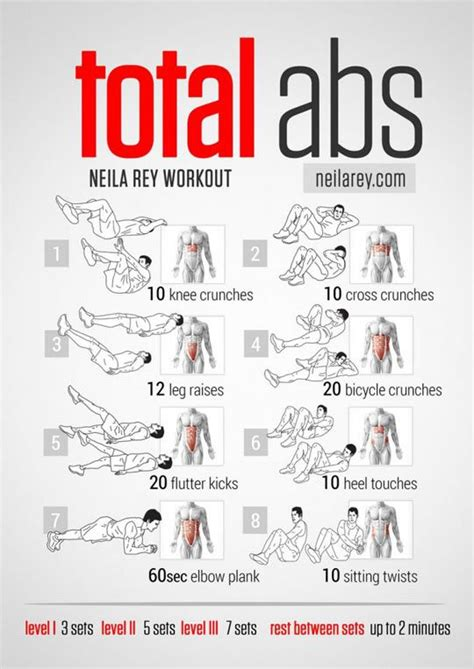 best ab exercise infographics the best ab exercises to complete your