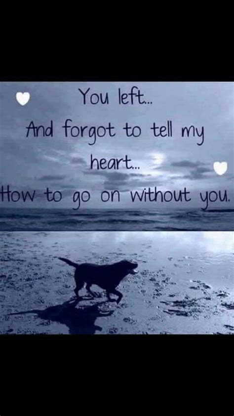 10 Signs You Are Losing Your Best Friend by Best 25 Miss My Ideas On Loss Poem