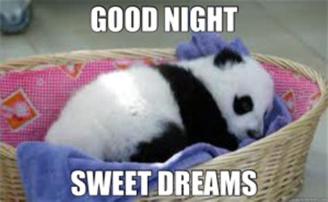 Goodnight Meme Cute - images sweet good night impremedia net
