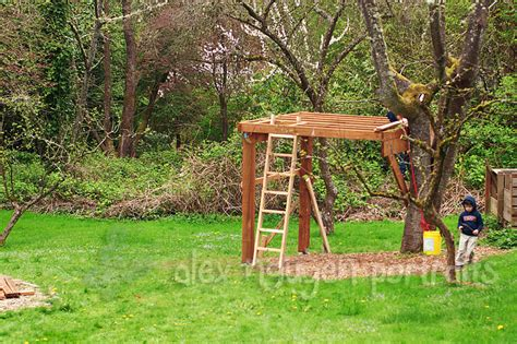 simple backyard tree houses building a treehouse seattle area lifestyle photographer