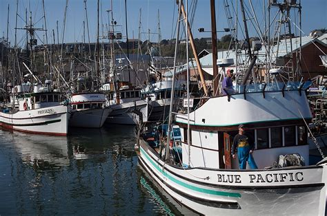 boat supply store sacramento saving the pacific salmon earthjustice