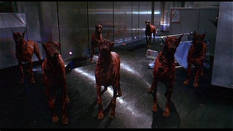 resident evil dogs zombies dogs and rad hounds zombies search and resident evil