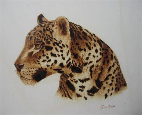 imagenes increibles de otoño file leopardo jpg wikimedia commons
