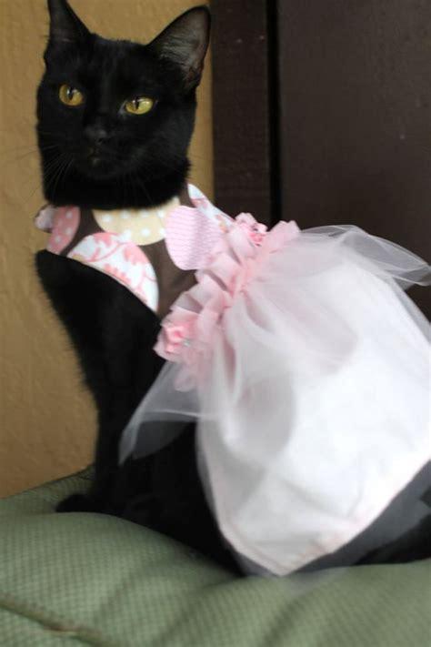 pink cat dress pink cat dress clothing for wedding flower cat pink