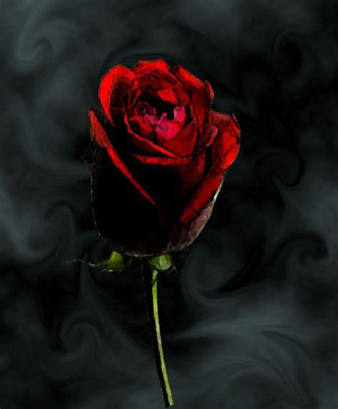 imagenes rosas dark space rose by dark reaper on deviantart