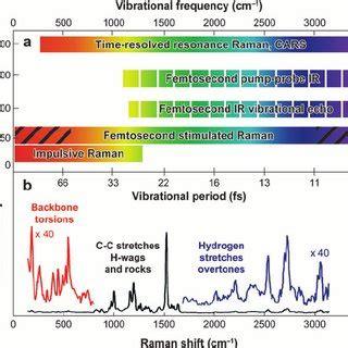 Pdf Theory Of Femtosecond Stimulated Raman Spectroscopy