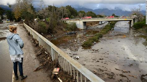 Olive Tree by Southern California Floods 13 Killed As Mud Wipes Out