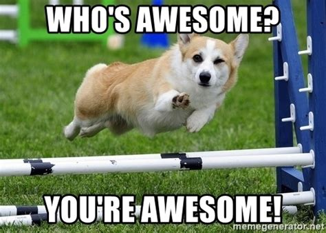 whose awesome you re awesome who s awesome you re awesome ridiculously photogenic