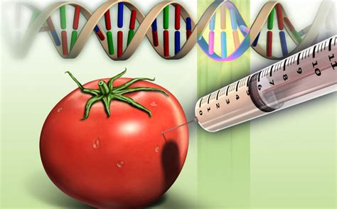 Modified Vaccine Definition by Crowd Act Genetically Modified Organisms