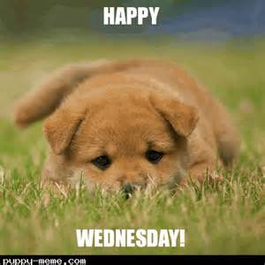Happy Wednesday Meme - popular memes of quot wednesday wisdom quot