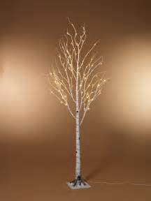 lighted birch trees warm white led tree lights images