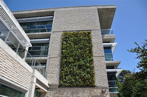 reducing garden footprint through vertical gardening teresay