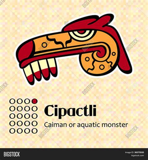 Calendario Azteca Signos Vector Y Foto S 237 Mbolos Calendario Azteca Bigstock