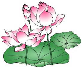 Drawing A Lotus Flower Clearwisdom Net Photo Archive