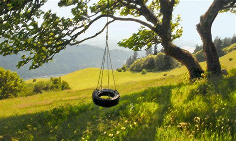 tree with tire swing tire swing with a view by kevin felts