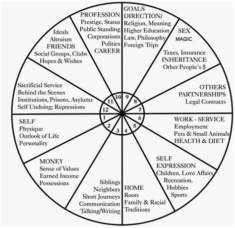 Tenth House Astrology by Illume Astrology The House Types