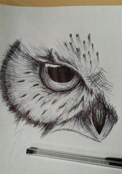 best pen to doodle with best 25 owl sketch ideas only on owl drawings