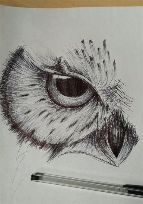 best sketch best 25 owl sketch ideas only on owl drawings
