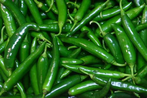 wallpaper of green chillies things not to eat before going to bed india new england news