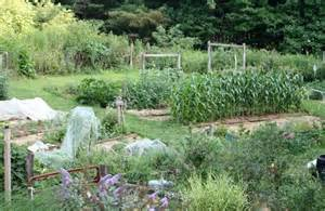 barbara pleasant my hillside vegetable garden