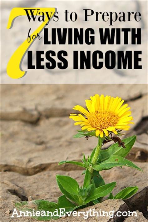 living with less 7 ways to prepare for living with less income annie and