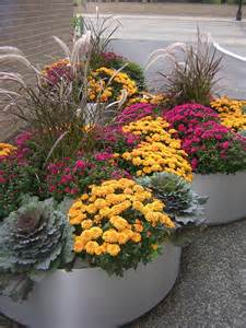 fall plants fabulous fall flower containers