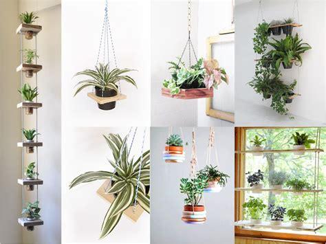 decoracion de plantas decoration42 decoracion con plantas de interior