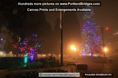 esther short park christmas tree vancouver wa 2008