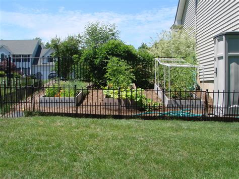 Garden Fence Ideas For Dogs Garden Fence Ideas To Keep Dogs Out Container Gardening Ideas
