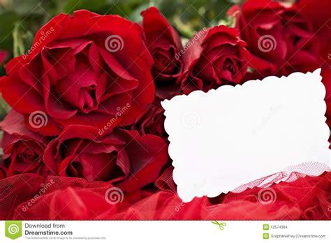 imagenes de rosas negras y rojas rosas rojas y tarjeta en blanco imagenes de archivo