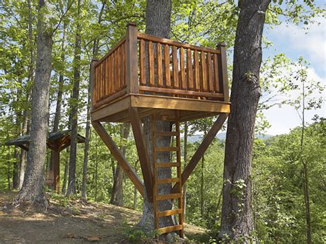 pictures of tree houses pigeon forge cabin the treehouse 3 bedroom sleeps 10