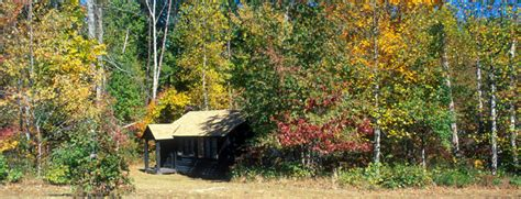 cabin cing prince william forest park u s national