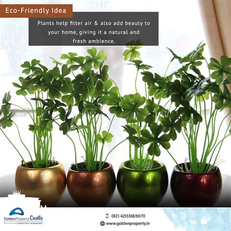 amazing Plant Decoration In Living Room #4: Attractive-Indoor-Plants.jpg